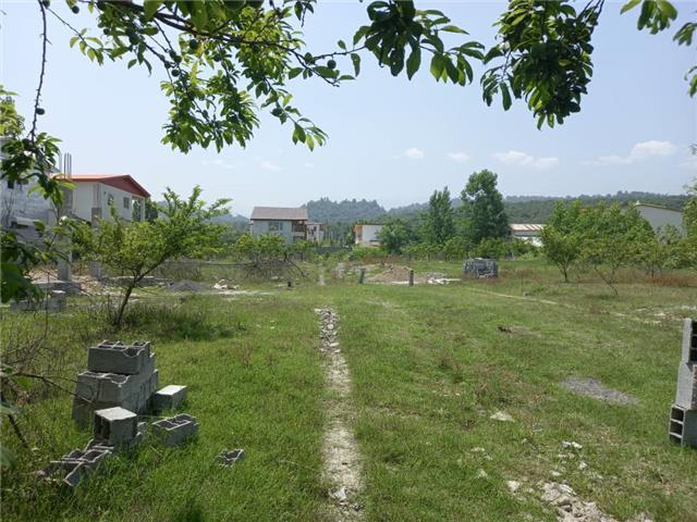 خرید زمین مسکونی 240 متری شهرکی جنگلی در چمستان