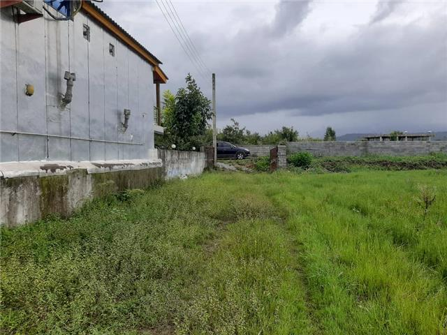 فروش ارزنده 196متر زمین در امیراباد