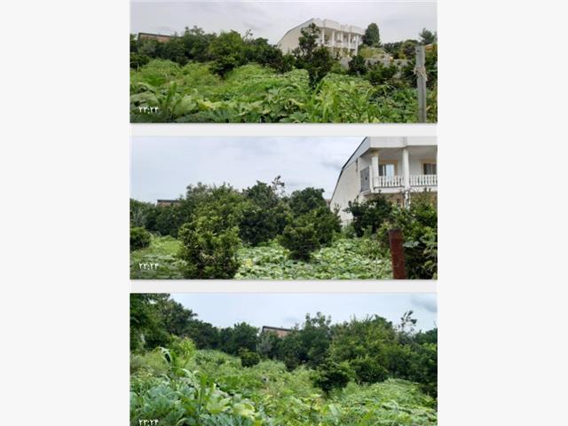 فروش 500متر زمین داخل بافت در ورازده علیا