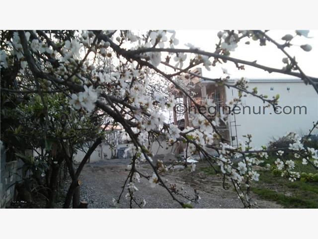 خرید زمین شهرکی تا 200 میلیون امیرآباد