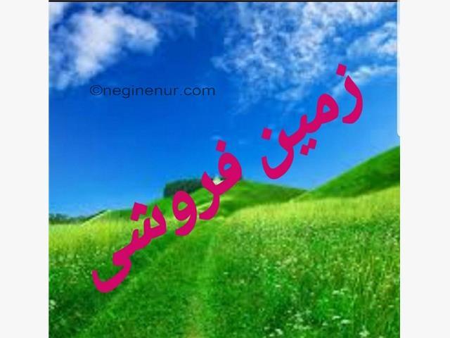 خرید زمین در امیرآباد شهرکی با 100 میلیون