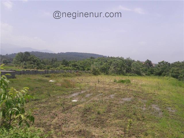 فروش زمین باغی زیر قیمت بهدشت